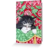 A comfy cat Greeting Card