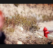 Red Focused Fire Hydrant by lightplay21