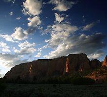 Kolob Mesa (Zion National Park) by Joe Webb