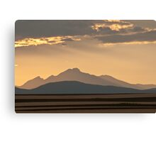Gold In The Hills Canvas Print
