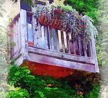 Georgetown Balcony by suzannem73