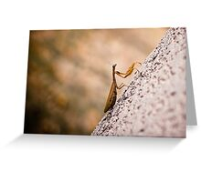 Kung Fu Fighter Greeting Card