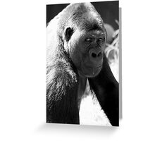 Silverback in B&W Greeting Card
