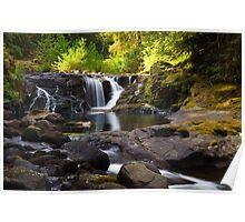 Falls on Sweet Creek Poster