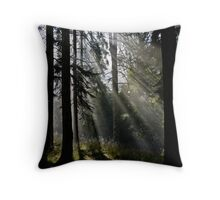 Launceston Gorge - the Basin Lumix G1 with 14-45 lens Throw Pillow