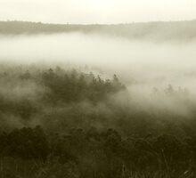 Misty by Dirk Michael Dudat