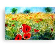 Adam Pearson's 'Poppy Field' Canvas Print