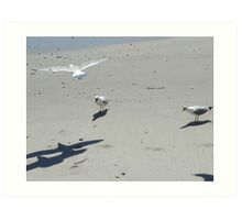 Bedlam on the Beach Art Print