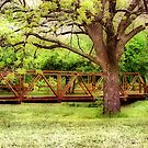 Protecting the Walkway by Pat Moore