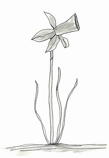 daffodil by dthaase