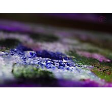 BlueWaters Photographic Print
