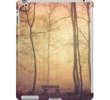 bench iPad Case/Skin