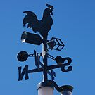 The weather vane by janfoster