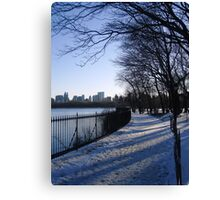 Central Park Winter Canvas Print