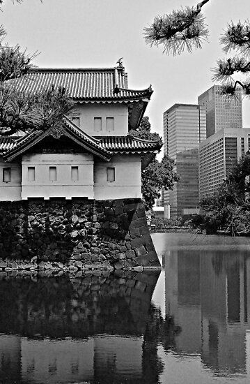 Old Meets New:  Imperial Gardens, Tokyo by OldSailor