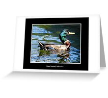 Smiling Duck Greeting Card