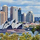 Opera House from Taronga Park Zoo by jayneeldred