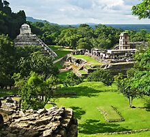 Palenque Ruins, Mexico by Clint Burkinshaw