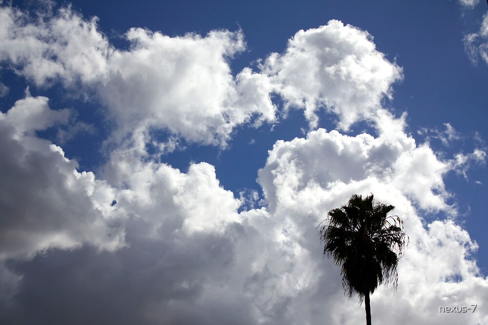 Cloudy California skies by nexus-7