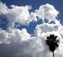 Cloudy California skies by nexus-7