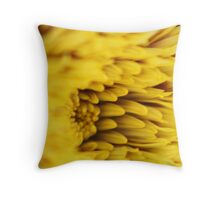 Ablaze. Throw Pillow