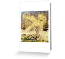 """ Windy Willow "" Greeting Card"