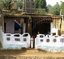 Village Life along the Nile by Marilyn Harris