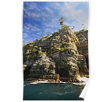 Tasman Cliffs Poster
