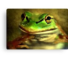 """Save ME !!!..........Take Care of Mother Earth !"" Canvas Print"