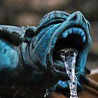 fountain gargyole.. by Michelle McMahon