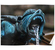 fountain gargyole.. Poster