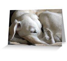 Sweet Slumber Greeting Card