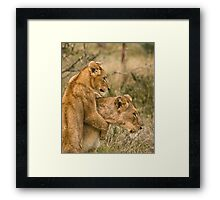 Play with me !! Framed Print
