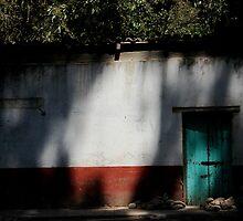 A Green door in the shadows  by richard  webb