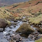 behind Blea Tarn - the winding stream by monkeyferret