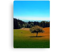 Another lonely tree in summer Canvas Print