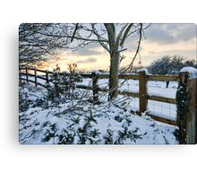 The snow fence  Canvas Print