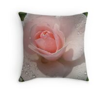 Sparkling Rose after the rain Throw Pillow