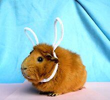 Easter Piggy by soyrwoo