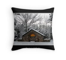 Park Shelter in the snow Throw Pillow