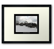 Snow covered trees on a knoll Framed Print