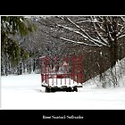 Hay Wagon in the snow by Rose Santuci-Sofranko