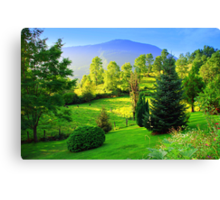 Countryside 03. Chile. Canvas Print