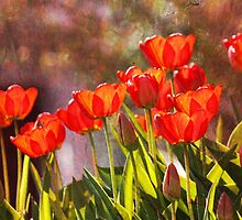 Spring's Vibrance by John Tomasko