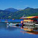 Lake Caburgua Chile by Daidalos