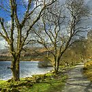 Elterwater Footpath by VoluntaryRanger