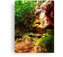 A rock, a bench and some forest Canvas Print