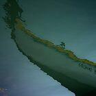 FLOAT ON by June Ferrol
