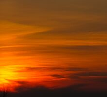 Bullet Sunset by MarianBendeth