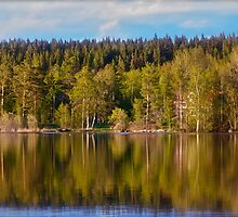 Landscape - Viking Camp - Sweden . by Brown Sugar . Favorites: 1 Views: 392 . Thanks ! by AndGoszcz